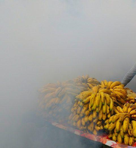 banana cart in fog
