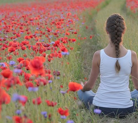 meditation in cornfield with poppies
